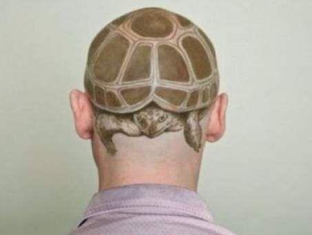 tatuaż żółw na głowie
