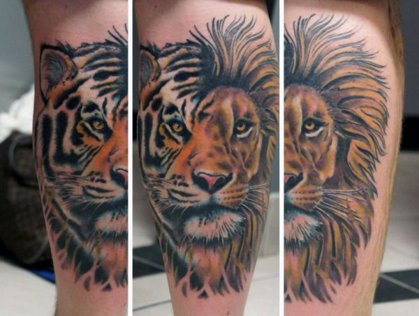 tiger and lion tattoo