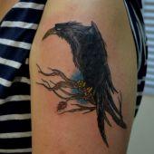 tatuaż kruka na ramieniu