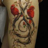 czerwone ptaki na udzie