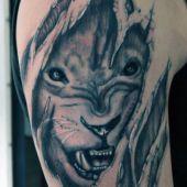 amazing lion tattooon shoulder