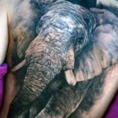 realistic elephant tattoo 3d