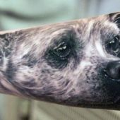 incredible dog 3d tattoo