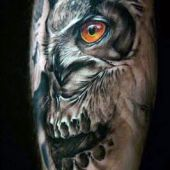 incredible owl tattoo 3d