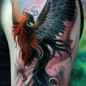 amazing phoenix arm tattoo