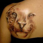 tatuaże 3D kot na plecach