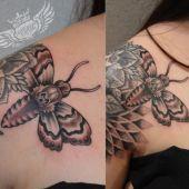 zmierzchnica tatuaż
