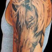 tatuaż koń na ramieniu