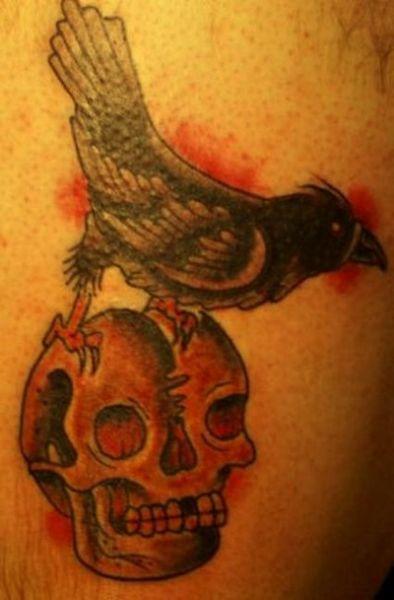Wzory Tatuaży Tatuaż Kruk Na Czaszce