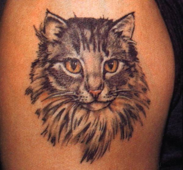 tatuaż kota