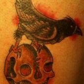 kruk na czaszce tatuaż