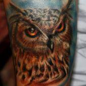 tatuaże ptaki sowa