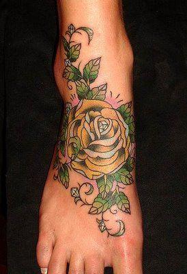 róża na stopie