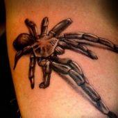 tatuaż pająka 3d